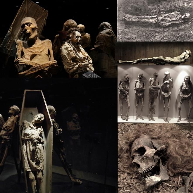 foto moorleichen mumien